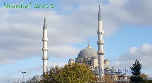 mosque500
